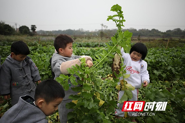 """湖南衡阳:""""爱心化雨露·童心暖夕阳""""公益活动温暖贫困户"""