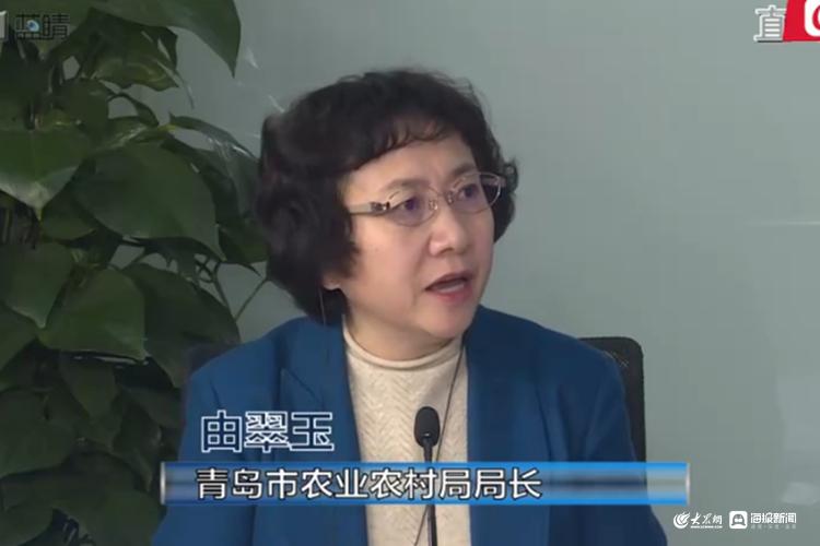 平度成为国家宅基地改革试点县 青岛有望出台宅基地地方性新规
