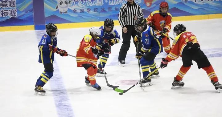 中国中学生冰球锦标赛、小学生冰球冬令营落幕