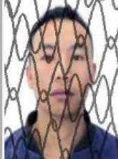 普定县人民法院执行悬赏公告---(2020)黔0422执1371号