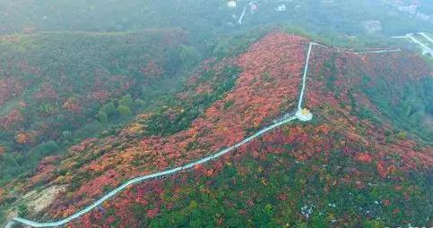 去嵩山少林旅游,你会选择去青龙潭还是新安县龙潭大峡谷