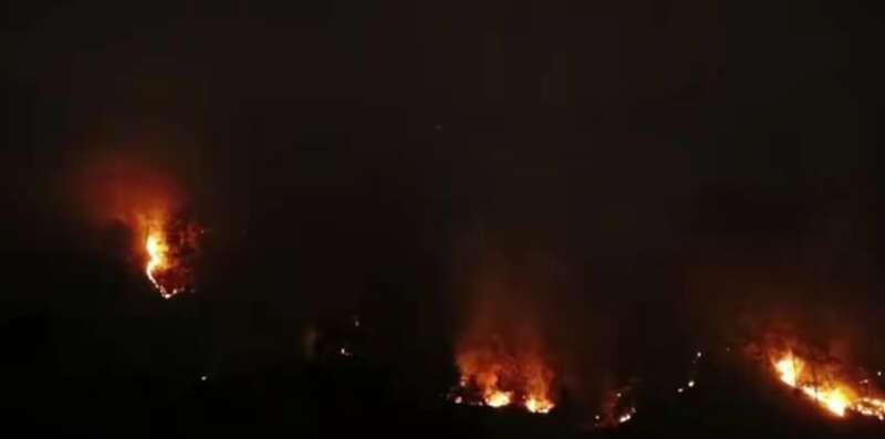 应急管理部:云南香格里拉森林火灾过火面积约65公顷