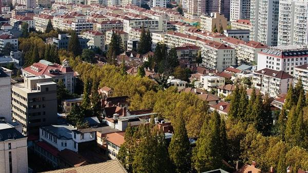 朦胧诗人顾城生活过的街区 正在以你看不见地速度逆生长