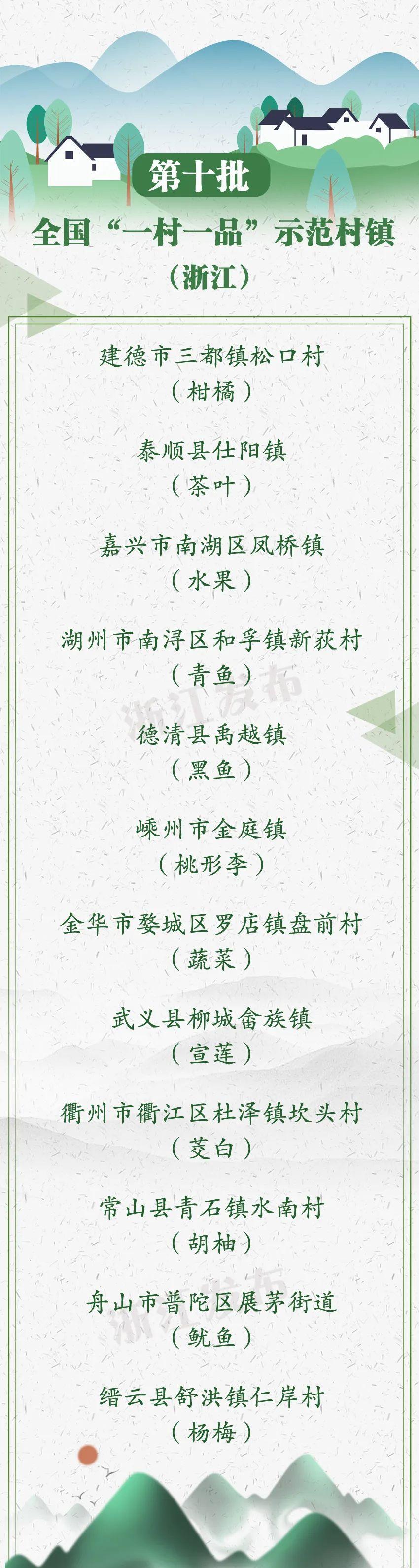 厉害了!浙江这些地方入选全国十亿元镇、亿元村图片