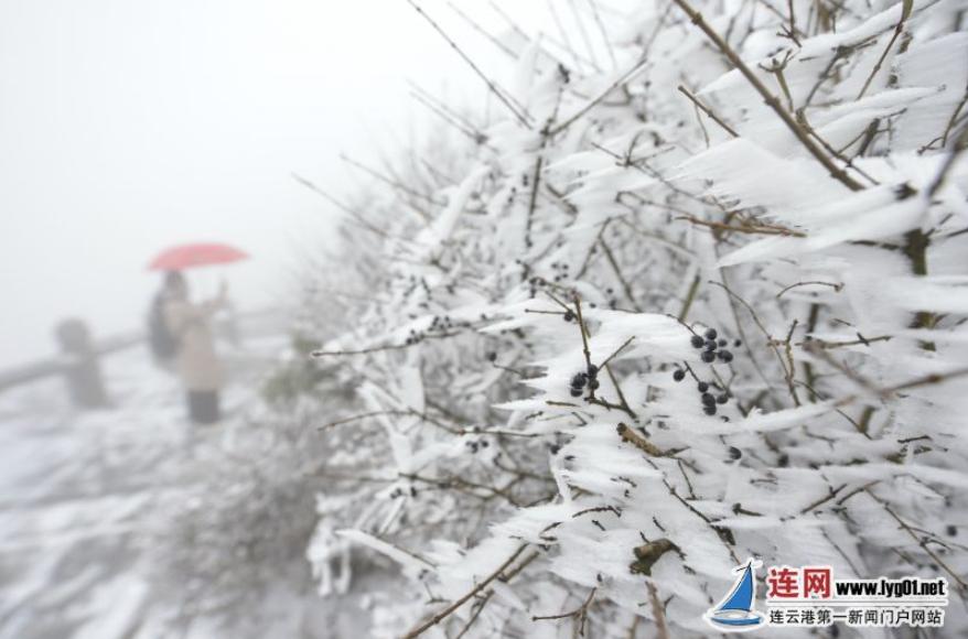 花果山玉女峰迎来降雪