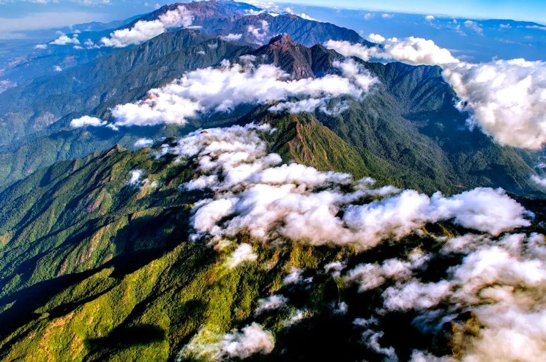 "【COP15】保护生物多样性,云南积极探索""4个率先 3个创新""图片"