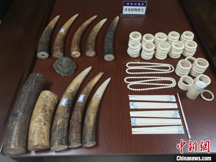 水口海关向林业局移交走私动物制品 共115件重约33.36千克