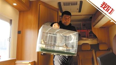 """""""候鸟班车""""从哈尔滨首发 200余只野生鸟乘车前往洞庭湖"""
