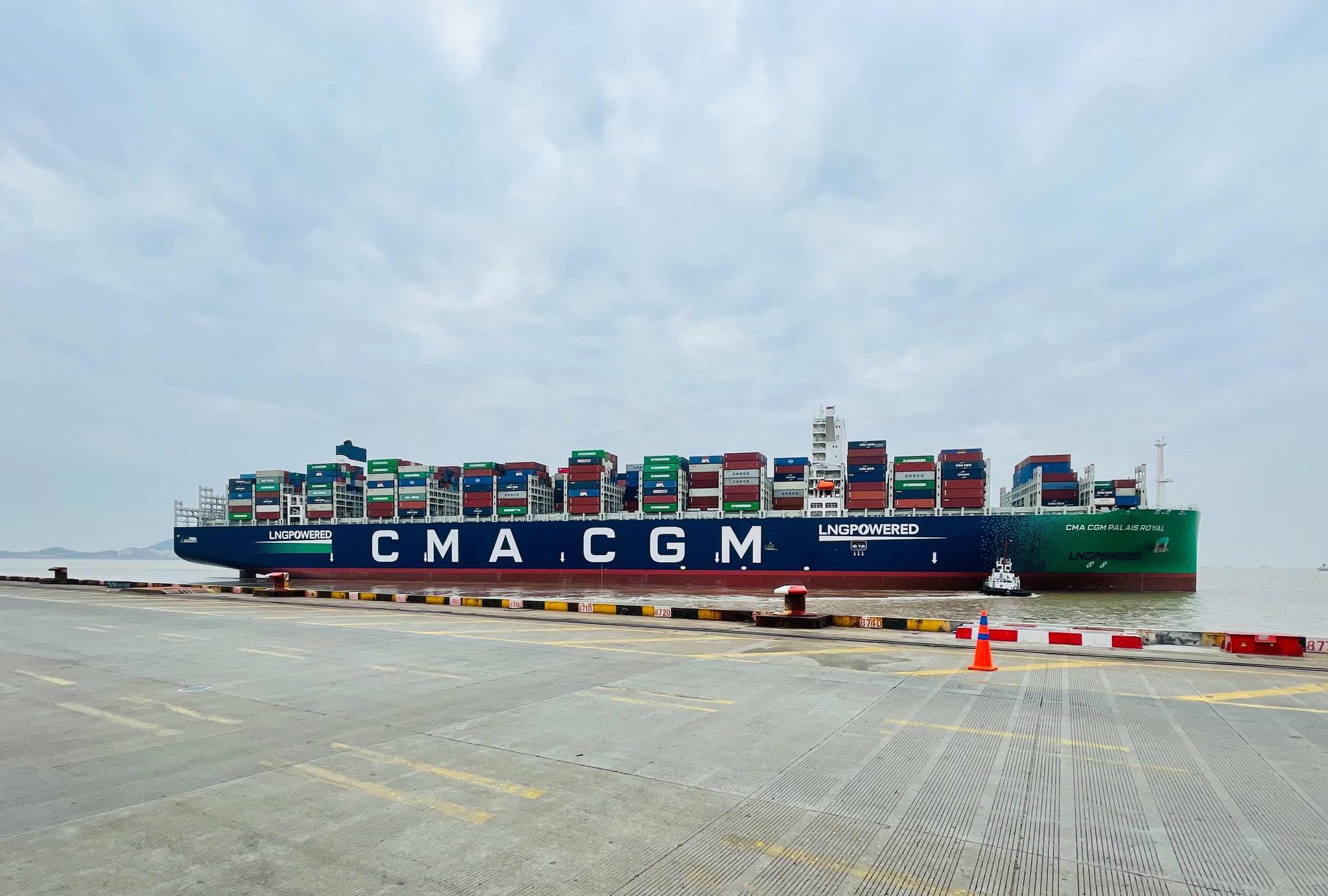 再创新高!上海洋山港集装箱全年吞吐量预计首超两千万标箱图片