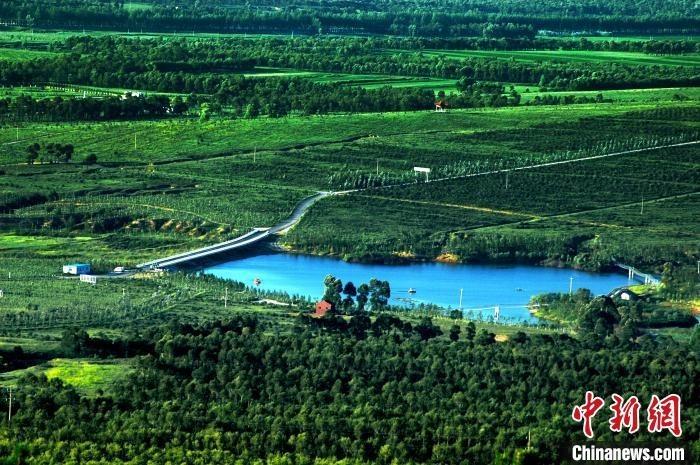 右玉人把植树造林融入生活。右玉县委宣传部供图