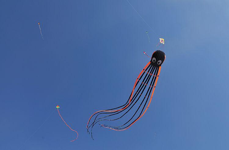 永定门南广场 放飞风筝享受春光|组图图片
