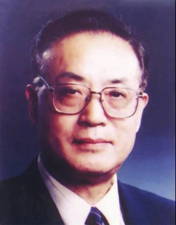 中国工程院院士、武汉大学教授宁津生逝世图片