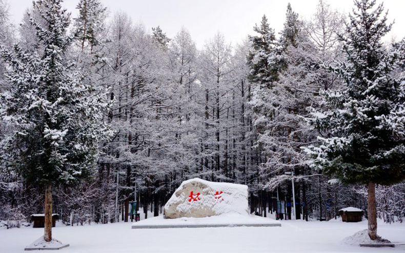 黑龙江漠河:迎来入春最大降雪 雪深10厘米