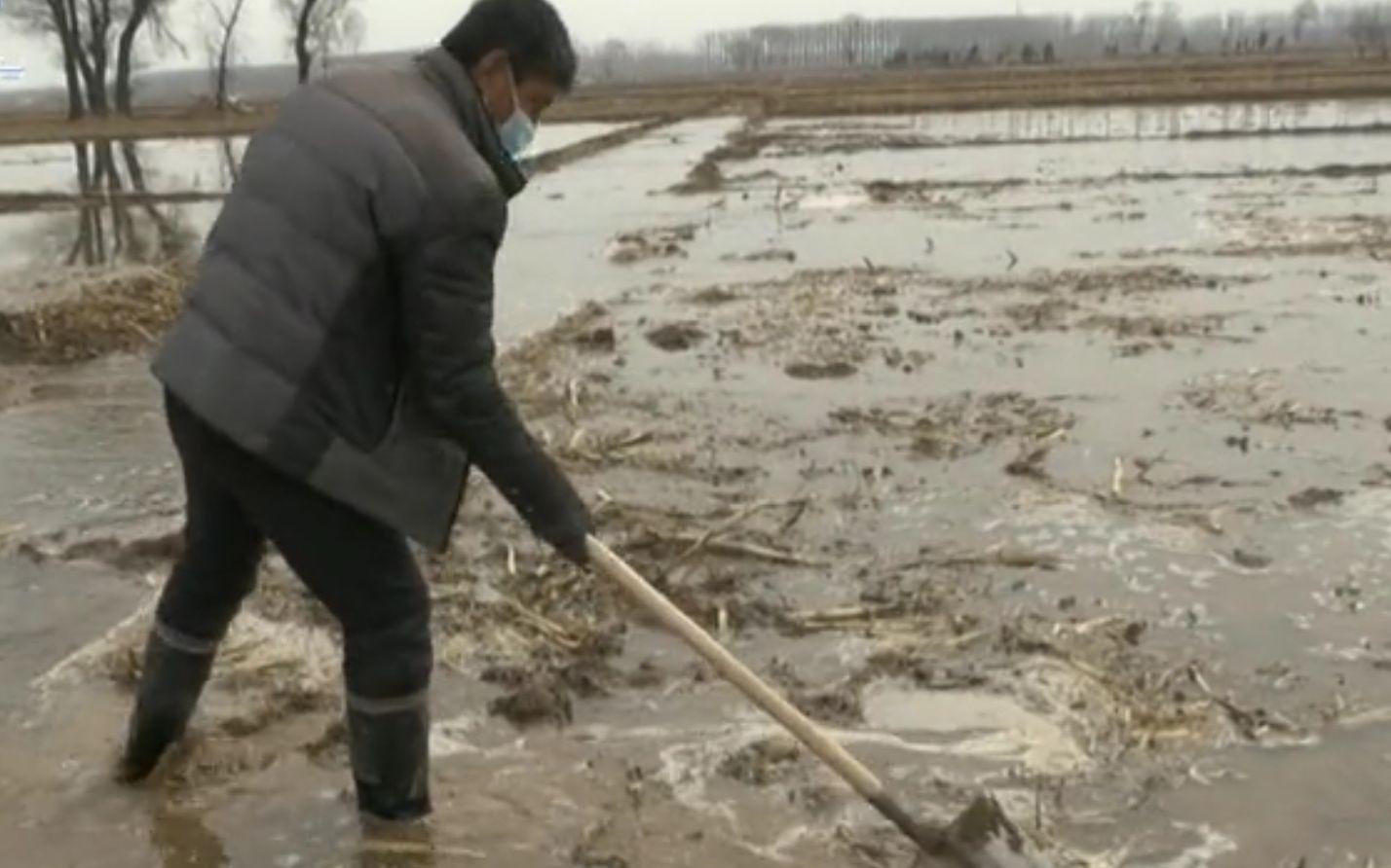"""苏家堡村整村隔离近两个月 田里将陆续开始""""代耕代种"""""""