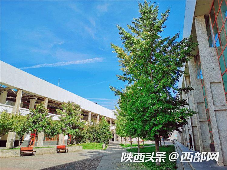 春天里的陕西   西安建筑科技大学华清学院:相约春天的浪漫