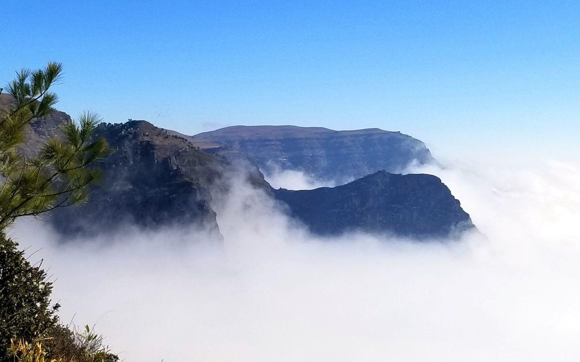 黑颈鹤结束过冬向北迁徙 云南大山包保护区还剩384只图片