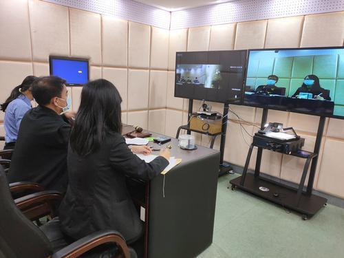 惠州大亚湾区法院线上宣判首宗口罩诈骗案