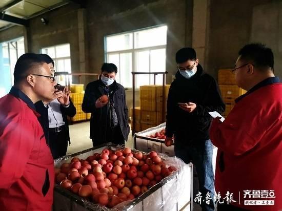 这个山东省派工作组为栖霞苹果打开销路