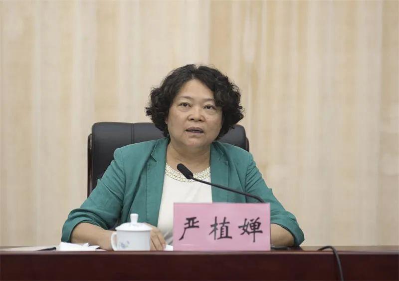 中央候补委员严植婵履新澳门图片