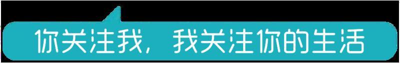 """华南师范大学副校长陈文海:网课""""秘籍"""" 免费送给全国教师"""