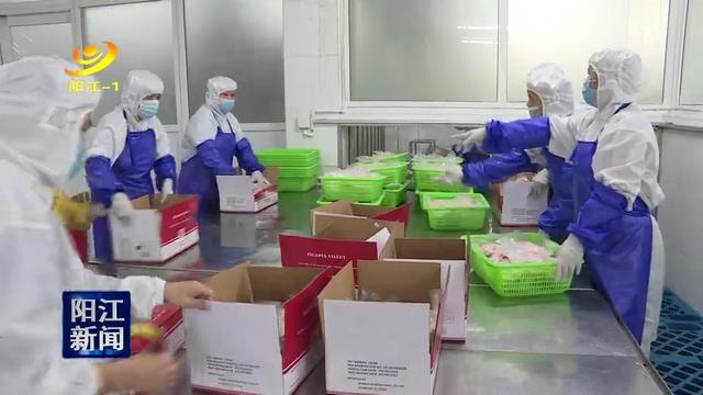 阳江出台奖励政策鼓励农产品出口