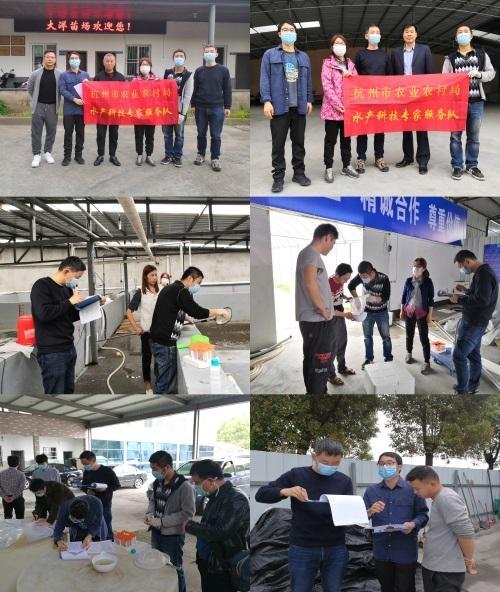 浙江杭州市水产科技专家服务队在萧山开展南美白对虾苗种病原检测服务