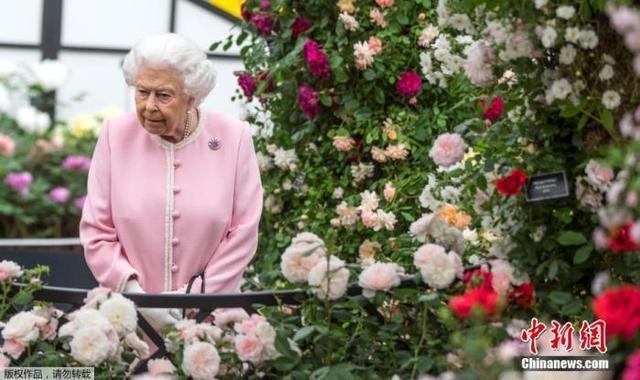 英媒:英女王一贴身侍从确诊 王室陷入一片恐慌