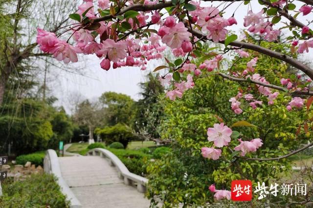 年卡所含景点已全部开放 镇江旅游年卡使用期限顺延三个月