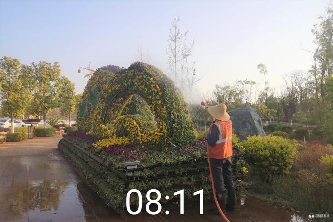 晋宁区开展园林植物春季病虫害防治工作