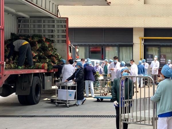贵州送25吨新鲜蔬菜给上海医护人员,表示敬意和慰问