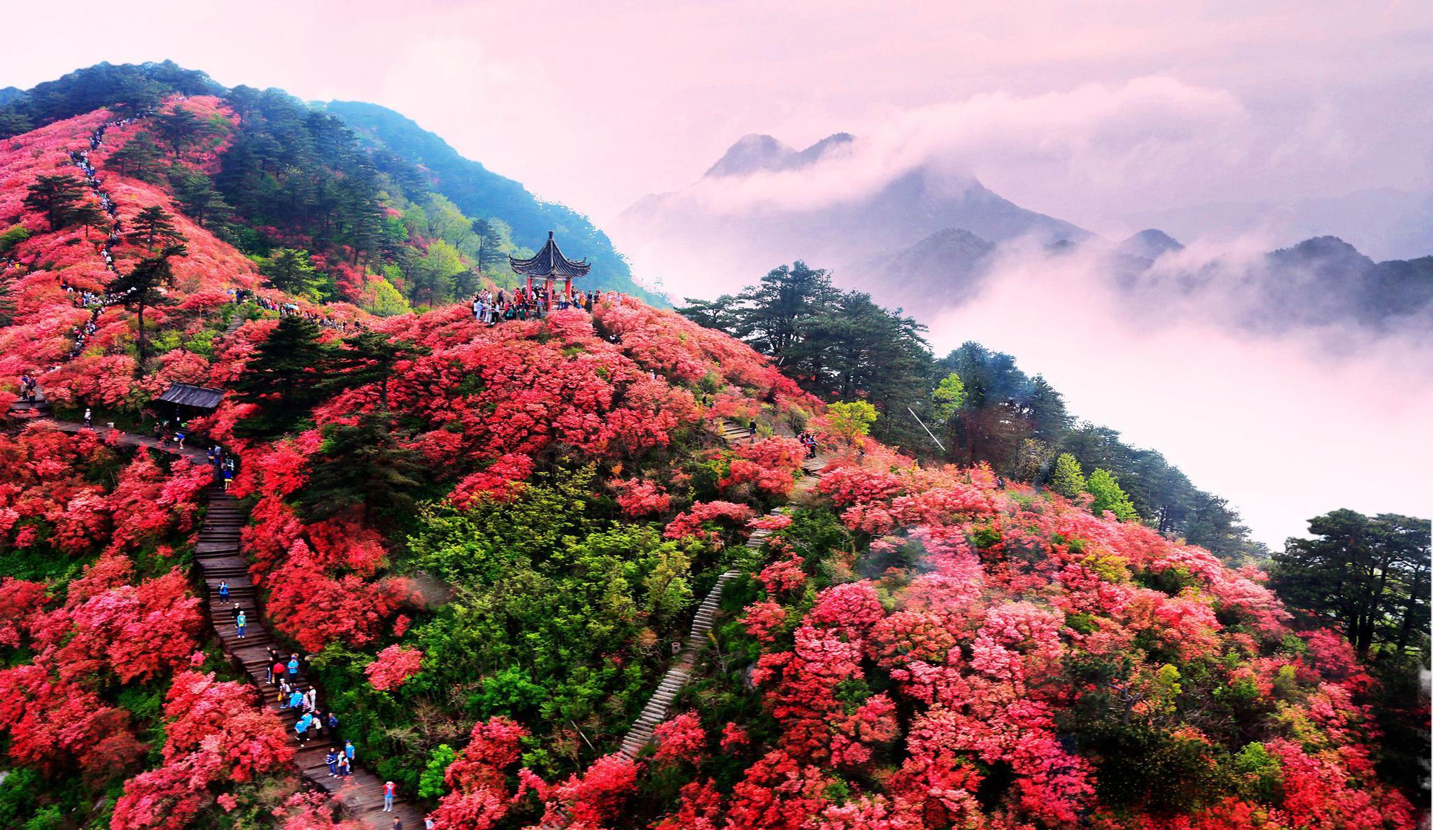 王建学:多举措助力黄冈旅游产业高品质复苏