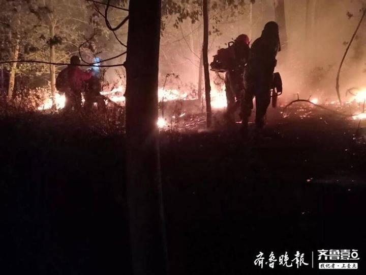 相关部门已为19名牺牲的救火英雄启动烈士申报程序