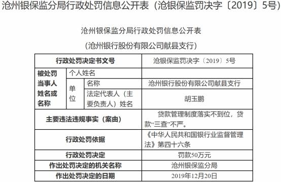 沧州银行行长黄美静遭罚 对支行违法贷款负领导责任