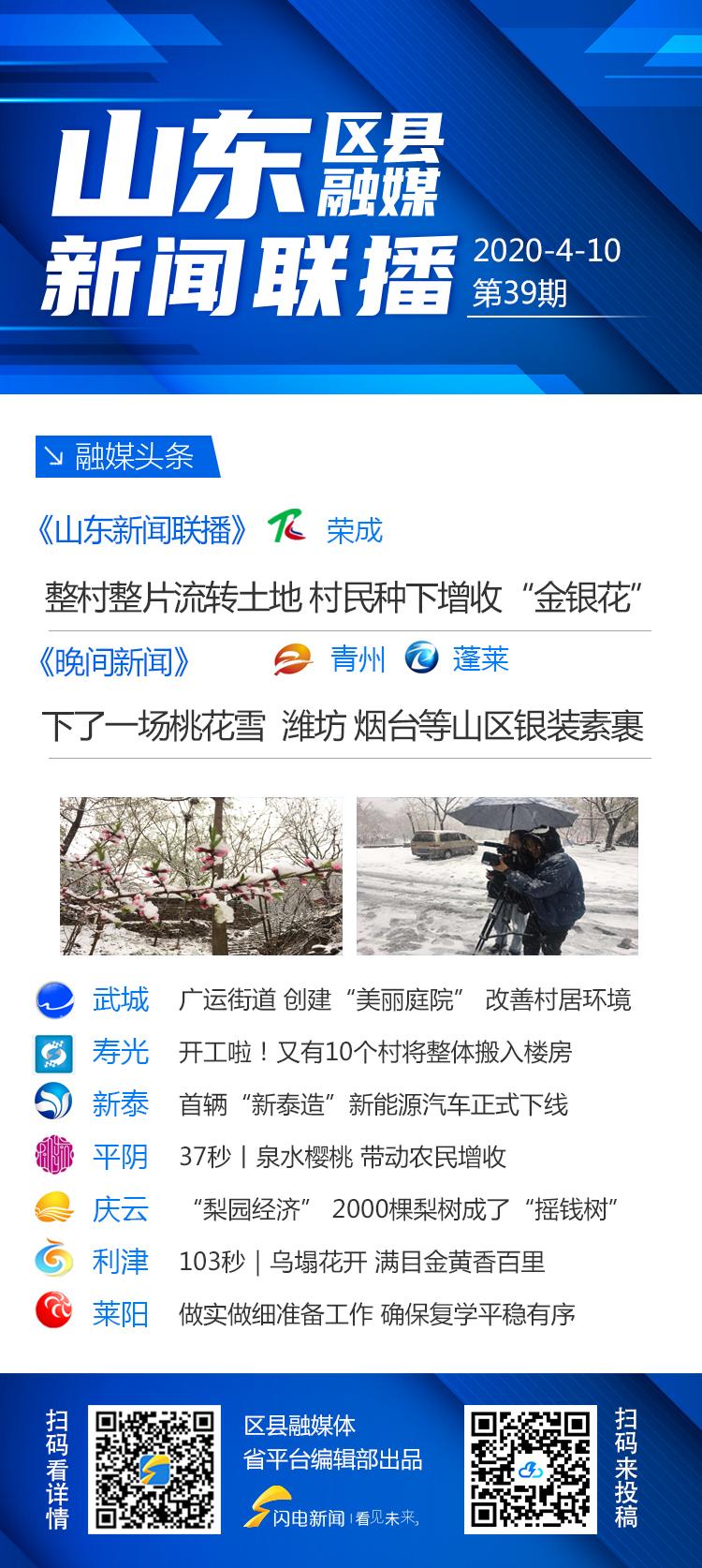 """山东区县融媒日报㊴威海荣成:""""整村整片""""流转土地 村民种下增收""""金银花"""""""