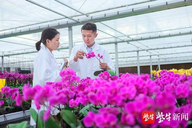 滨海:调优种养结构 推进农业现