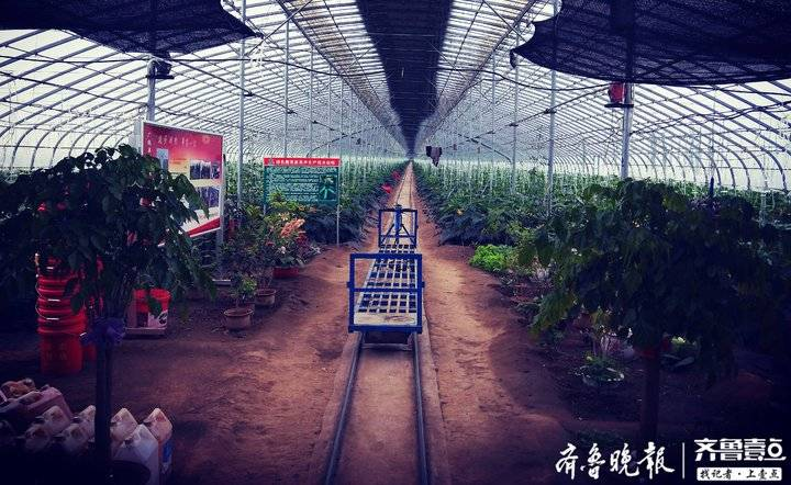 广饶县首家退役军人创业园在大王镇正式揭牌成立