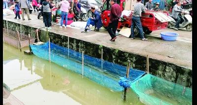 临桂庙岭农贸市场的水渠被污染?