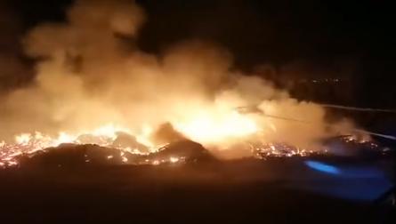四川凉山森林火灾系11岁男孩点燃松针引发,目前此案正在进一步侦查中
