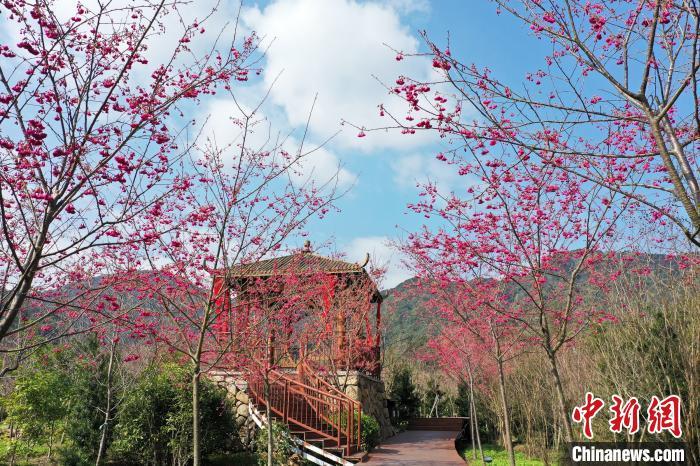 福建宁德景区逐步开放 旅游回暖