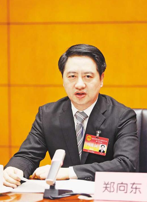 半年多次调整 他升任重庆副市长图片
