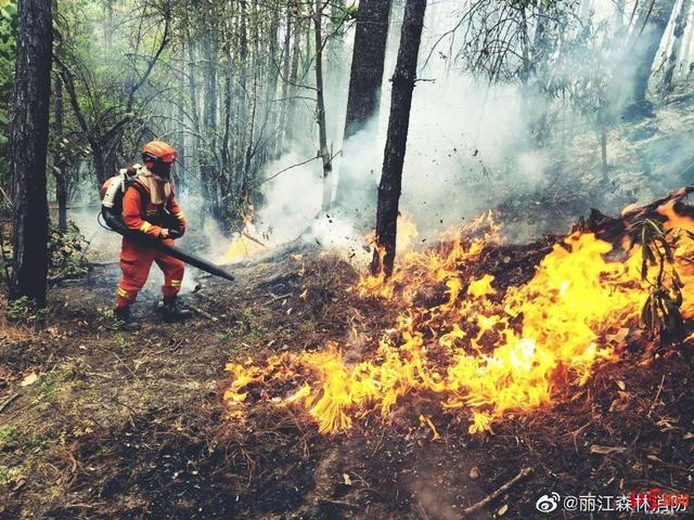 云南丽江森林火灾明火已扑灭 初步调查系电焊施工引发图片