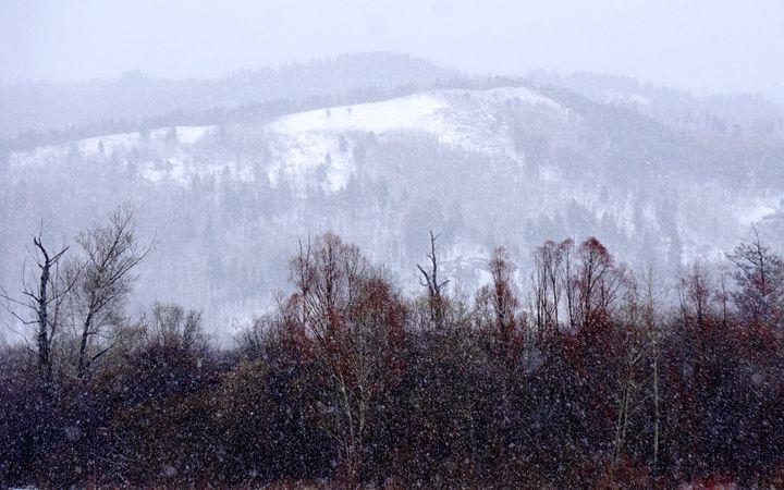 谷雨节气 黑龙江漠河迎来大雪图片