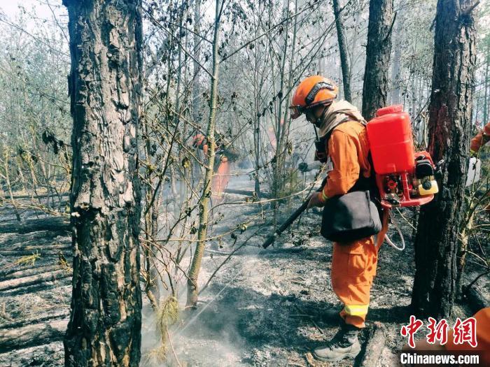 丽江龙蟠乡森林火灾东线已无明火 北线西线基本控制图片