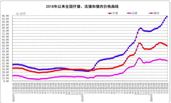 开始卖仔猪,天邦股份一季度商品猪售价同比大涨3.6倍
