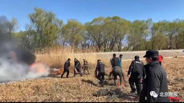 北京昌平一伙年轻人野外烧烤引发火灾?官方通报来了