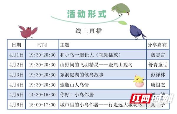 小鸟邻居你好! 湖南省爱鸟周系列直播活动4月1日开启