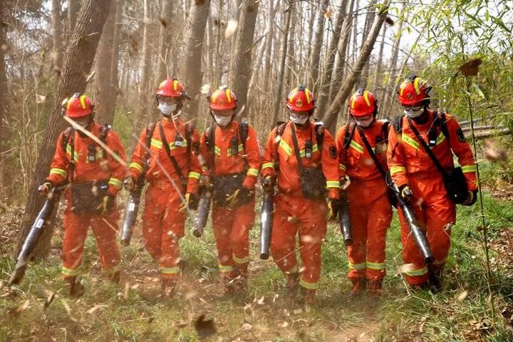 山东森林火灾扑救实战拉动演练在多地同时举行