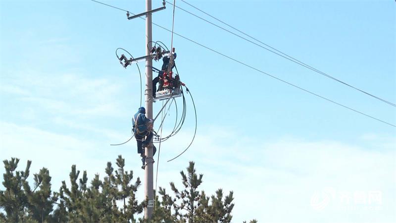"""""""线上+线下""""两步走!威海文登定位定向服务 让企业发展电力十足"""