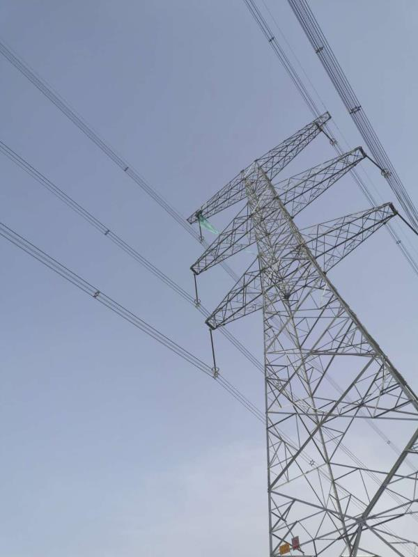 国网宁夏电力紧急消除输电线路重大危急缺陷保障浙江复工复产用电
