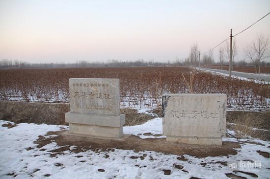 """知道龙华寺遗址吗?就是""""东方维纳斯""""出土的地方"""